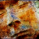 The Face by Stephen Morris