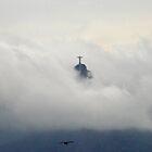 Corcovado - Christ the Redeemer - Rio de Janeiro by ColletteHoppe