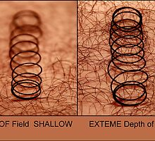 Depth of Field  SHALLOW &   EXTEME Depth of Field by Naveen  Sharma