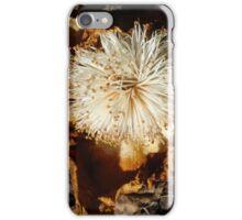 baobab dry flower iPhone Case/Skin