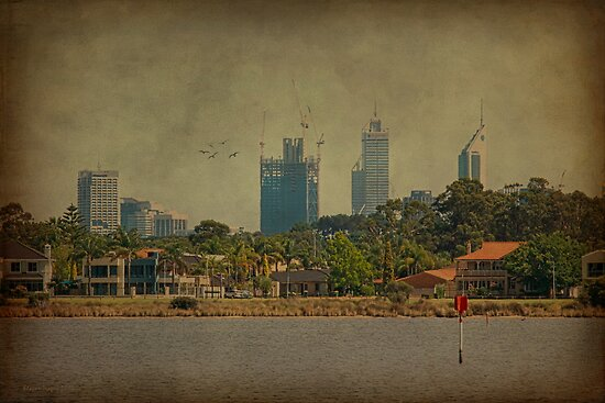 Perth City from Shelley, Western Australia by Elaine Teague
