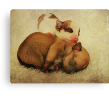 Just the two of us... Canvas Print
