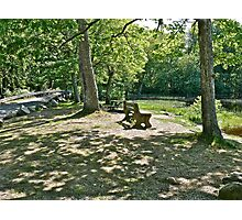 The Bench By The Pond  Photographic Print