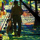 Walking the Tracks by Lenore Senior
