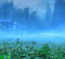 Foggy Evening, Austria by Sabine Jacobs