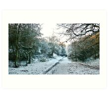 A Snowy Day; Hadleigh Railway Walk, Suffolk Art Print