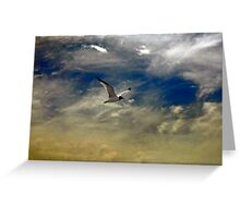 Flight of the Seagull Greeting Card