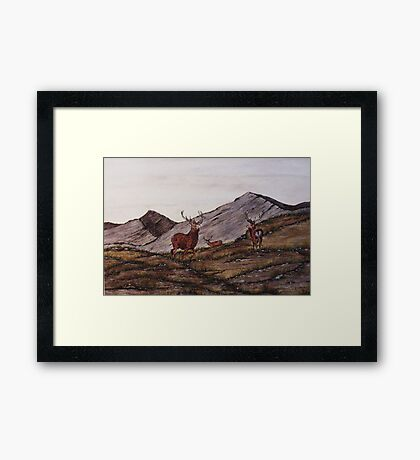 `Cabrach Stags' Red Deer in Scotland Framed Print