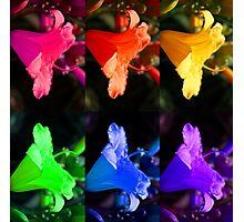 Rainbow Floral Square Photographic Print