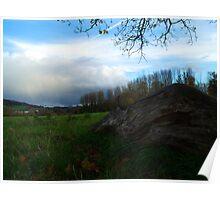 Log Landscape Poster