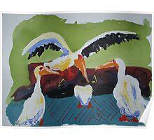Playful Storks Poster