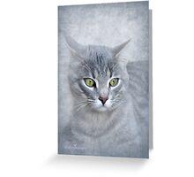 Rain (Feline portrait) Greeting Card