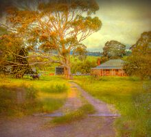 Before It's Gone - Nairne, Adelaide Hills, South Australia by Mark Richards