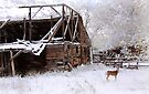 Rustic Barn -- Cue Deer by David Kocherhans