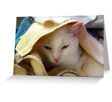 Little Lucy Folding Towels Greeting Card