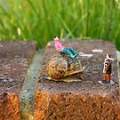 Hitchin a ride, snails pace  by thermosoflask