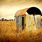 Weird little tin shed by tracielouise