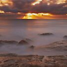 Maroubra Rays by Mark  Lucey