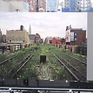 The Highline before restoration was begun... by Patricia127