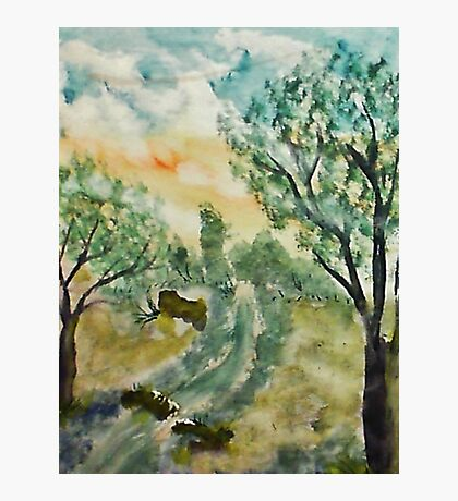 Down by the creek, watercolor Photographic Print