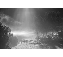 farmscapes #90, shone upon Photographic Print