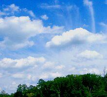 Carolina Cloud Sky By Jonathan Green by Jonathan  Green