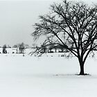 Winter Farmland 2010 by Ken Hill