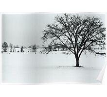 Winter Farmland 2010 Poster
