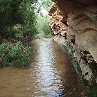 Deer Creek by Darren Logan