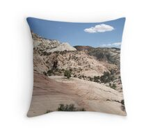 Haymaker Bench Drainage Throw Pillow