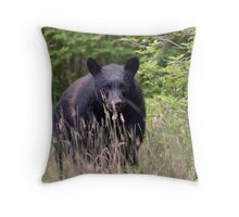 Black Bear in the Woods Throw Pillow