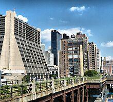 The High Line by joan warburton