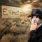 Gentleman Cat Is Thinking About Einstein's Physics by ewanthot