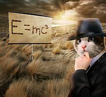 Gentleman Cat Is Thinking About Einstein's Physics by ewanthot