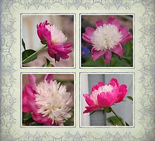 A Peony Flower Collage by Nanagahma