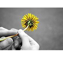 Dandelion Hands Photographic Print