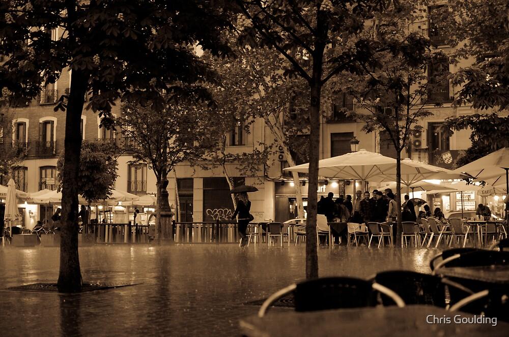 Plaza Santa Ana by Chris Goulding