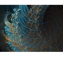 Sinew Photographic Print
