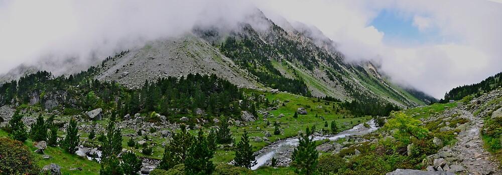 Pyrenees Stream by Dean Bailey