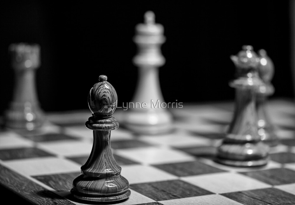 Checkmate by Lynne Morris