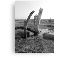 Norfolk Metal Print