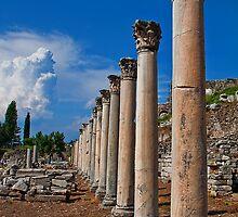 Turkey. Ancient Ephesus. Columns. by vadim19