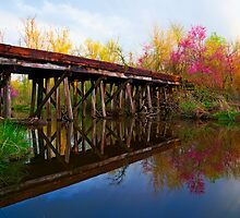 Springtime on Dirty Creek by Mitchell Tillison