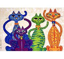 'High Street Cats' - a little bit Posh! (larger version) Photographic Print