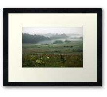 Fog layers in early morning Framed Print