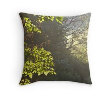 Brightly Shining Throw Pillow