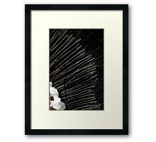 Bella Notte Framed Print