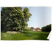 - Chestnut Tree Poster