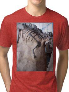 Cool Albertosaurus Tri-blend T-Shirt