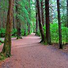 Totem Park Sitka, Alaska by Jennifer Hulbert-Hortman
